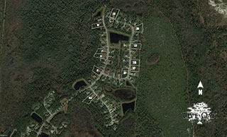 Live Oak Aerial Map
